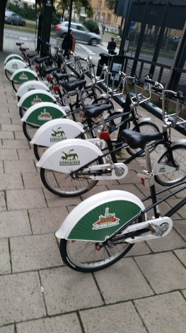 City Bikes! Check one out to explore and drop it off anywhere