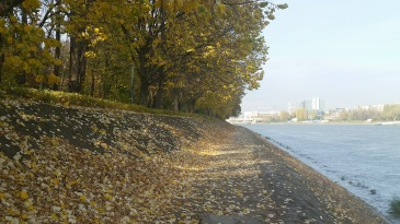 A stroll down the Danube