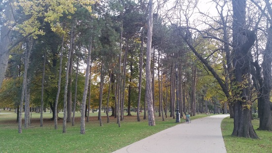 The woods of Margaret Island, a nice reprieve from the city