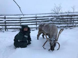 The thinker with her reindeer
